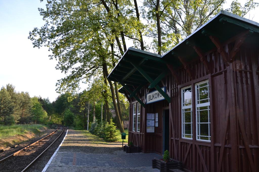 Stan techniczny stacji PKP po intensywnych pracach przeprowadzonych przez mieszkańców wsi Bukowo.jpeg