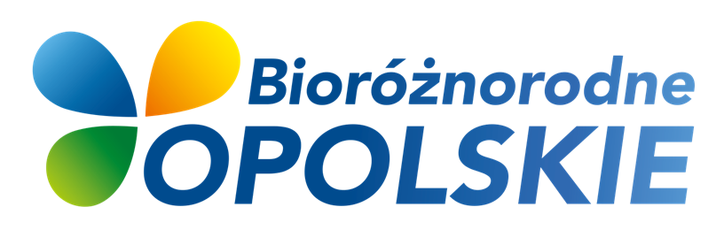 bioxlogoxgradient.png