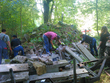 Galeria Radomierowice projekt
