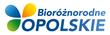 _000_bioxlogoxgradient.png