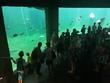 Galeria zoo Wrocław